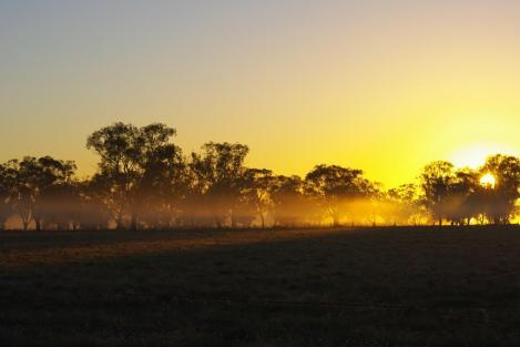 golden-sunrise-copy